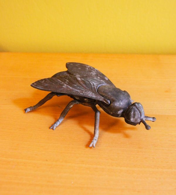 Insect jewelry box