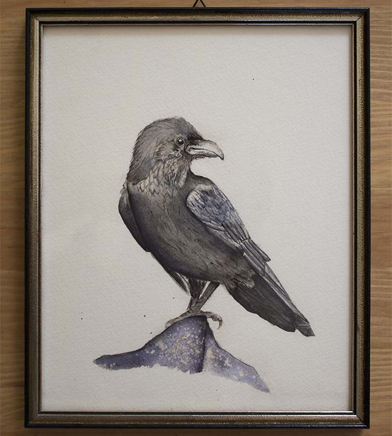 WALL DECORATION – CORVUS FRUGILEGUS